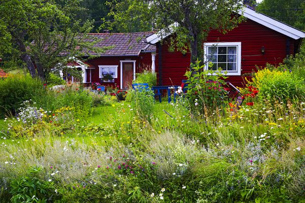 Beautiful cottage with a pollinator garden in the front yard.