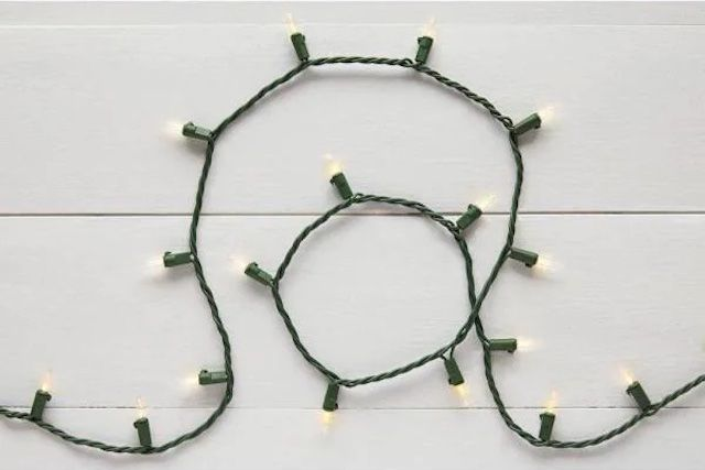 Home Accents Holiday LED Mini String Lights