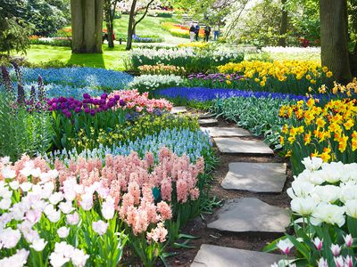 Outdoors Gardening