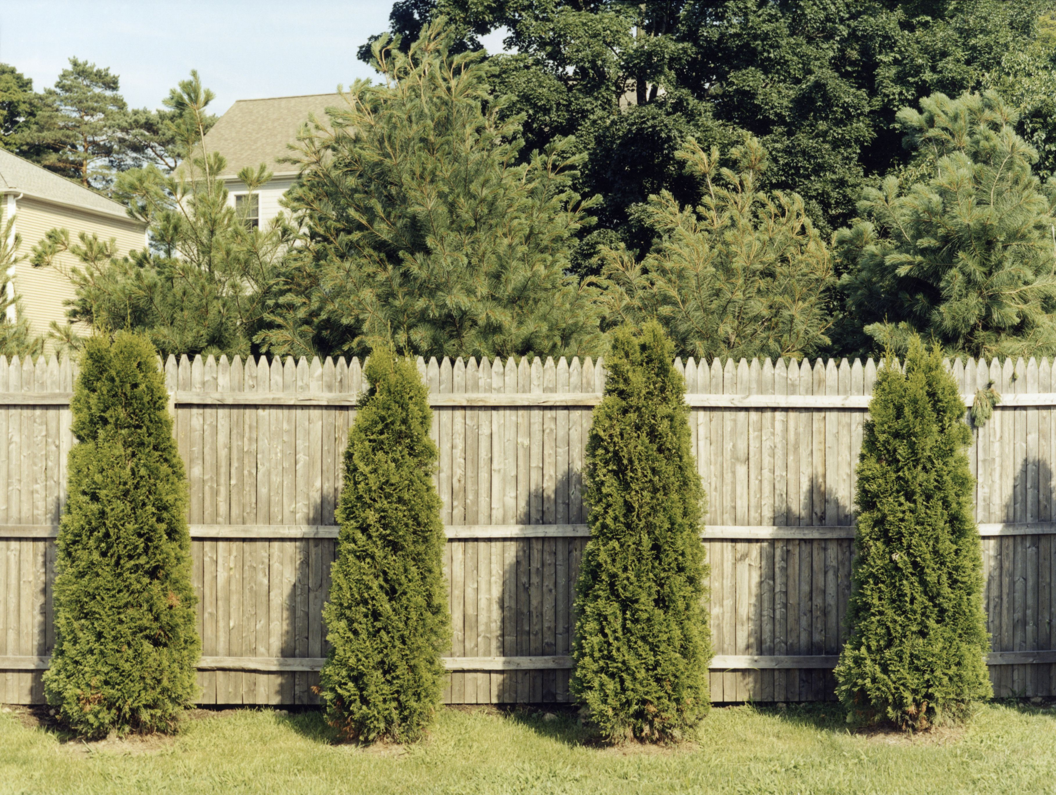 Fence Line Landscaping Ideas For Creative Homeowners