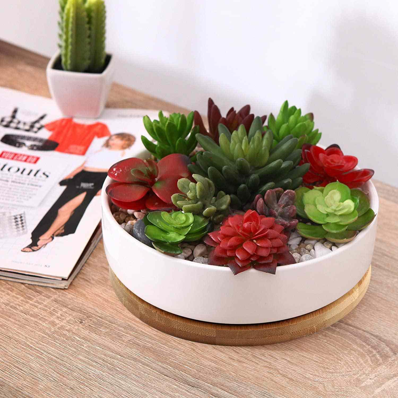 Round Succulent Planter