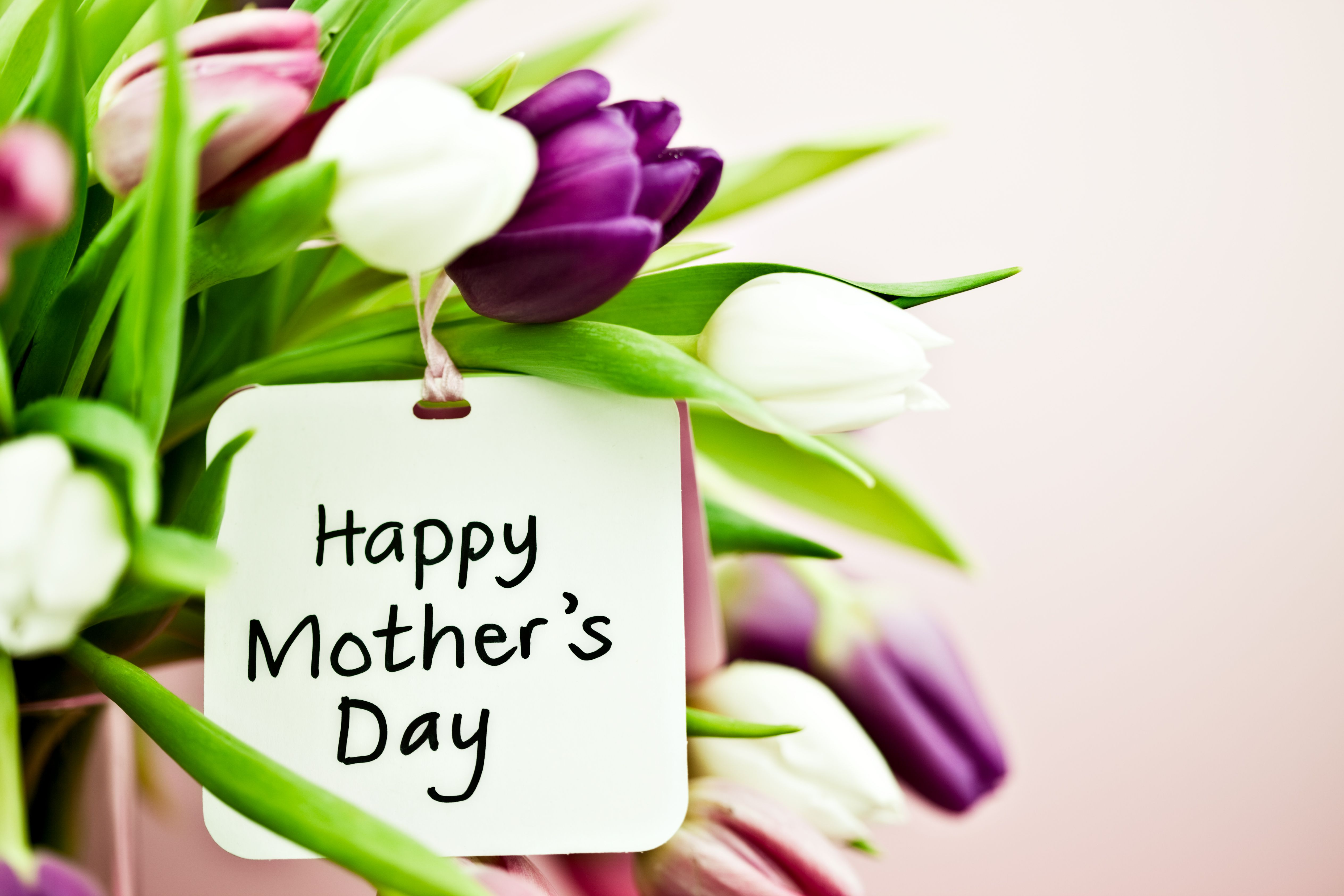 487 Free Mothers Day Poems That Will Touch Her Heart
