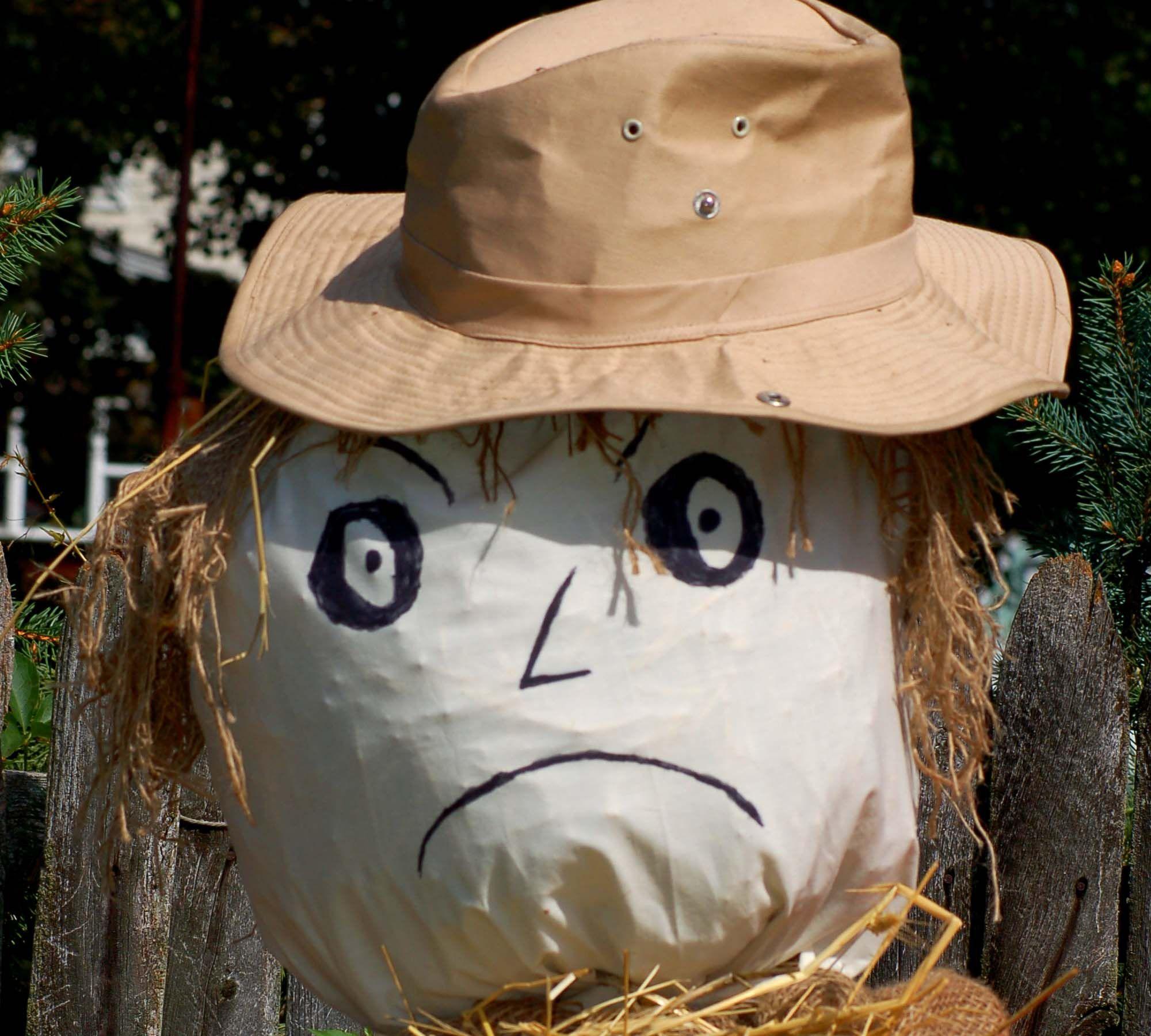 Phenomenal Ideas For Making Scarecrows Interior Design Ideas Inesswwsoteloinfo