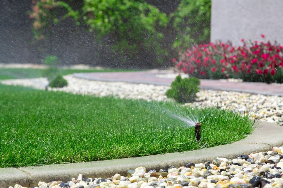Front Lawn Irrigation