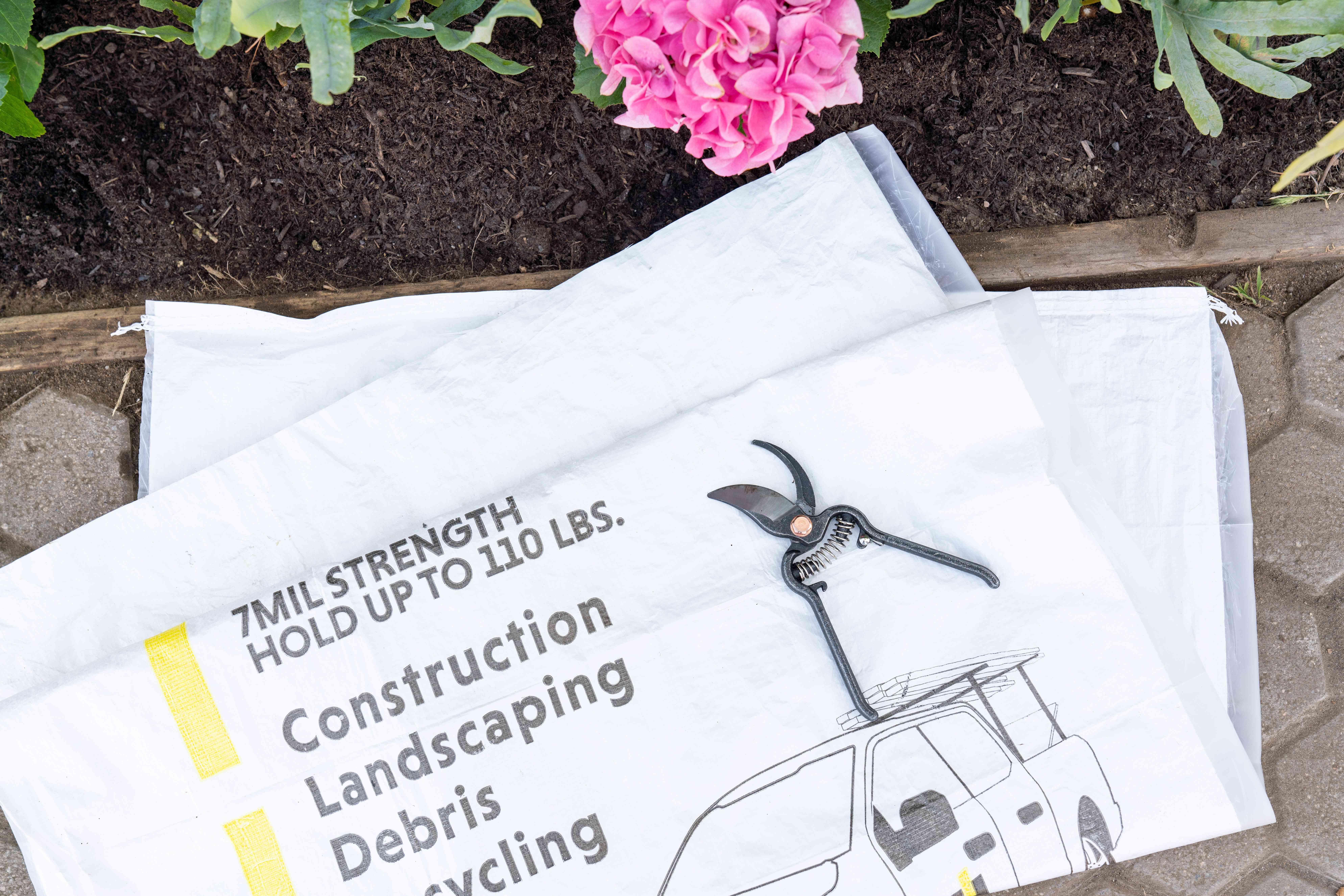 items needed to prune hydrangeas
