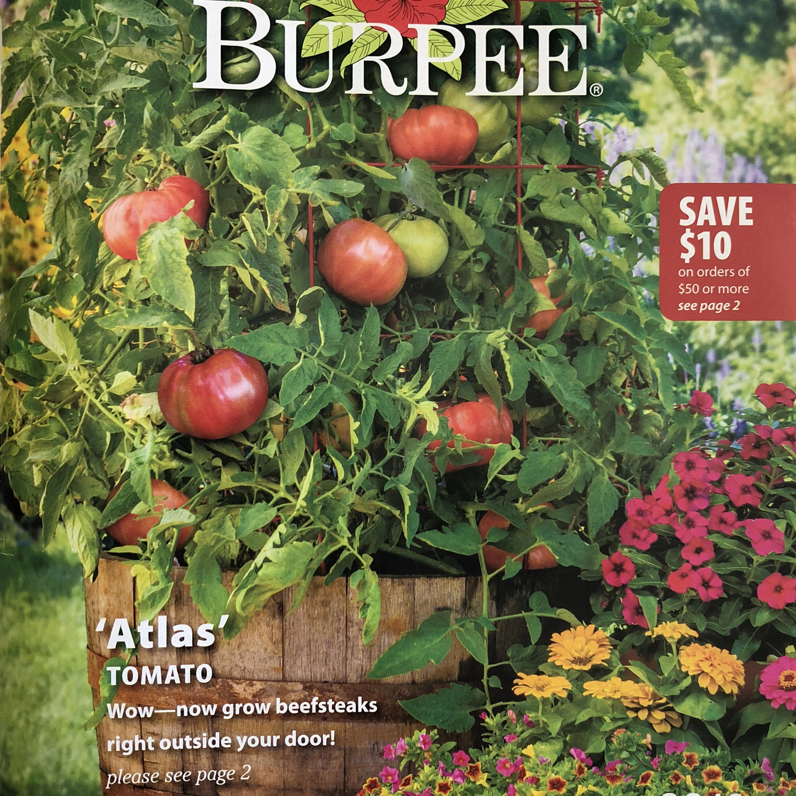 60 Free Seed Catalogs And Plant Plants Watering Watcher 2 Burpee Catalog