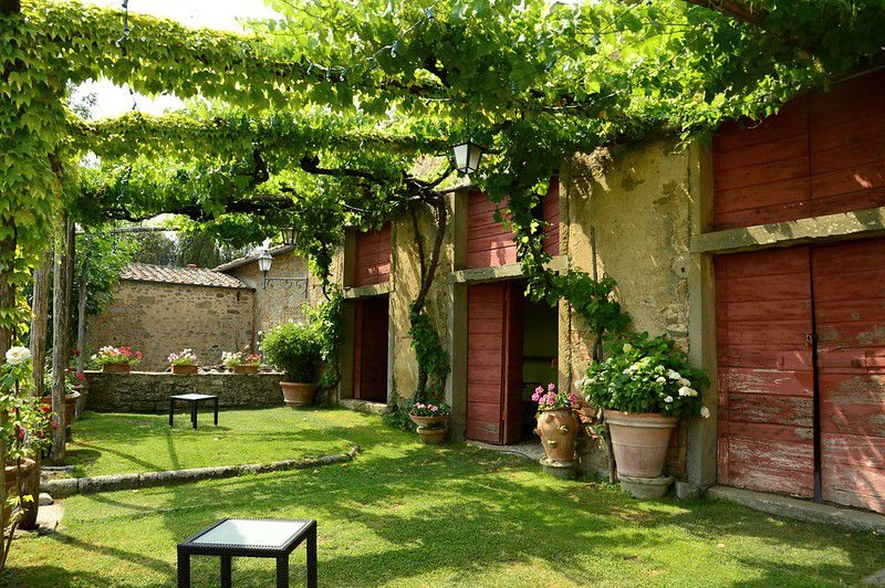 Garden in Tuscany with grape arbor and simple lawn