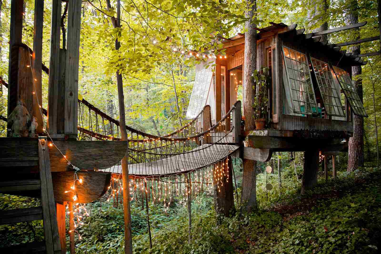 Casa en el árbol en el bosque