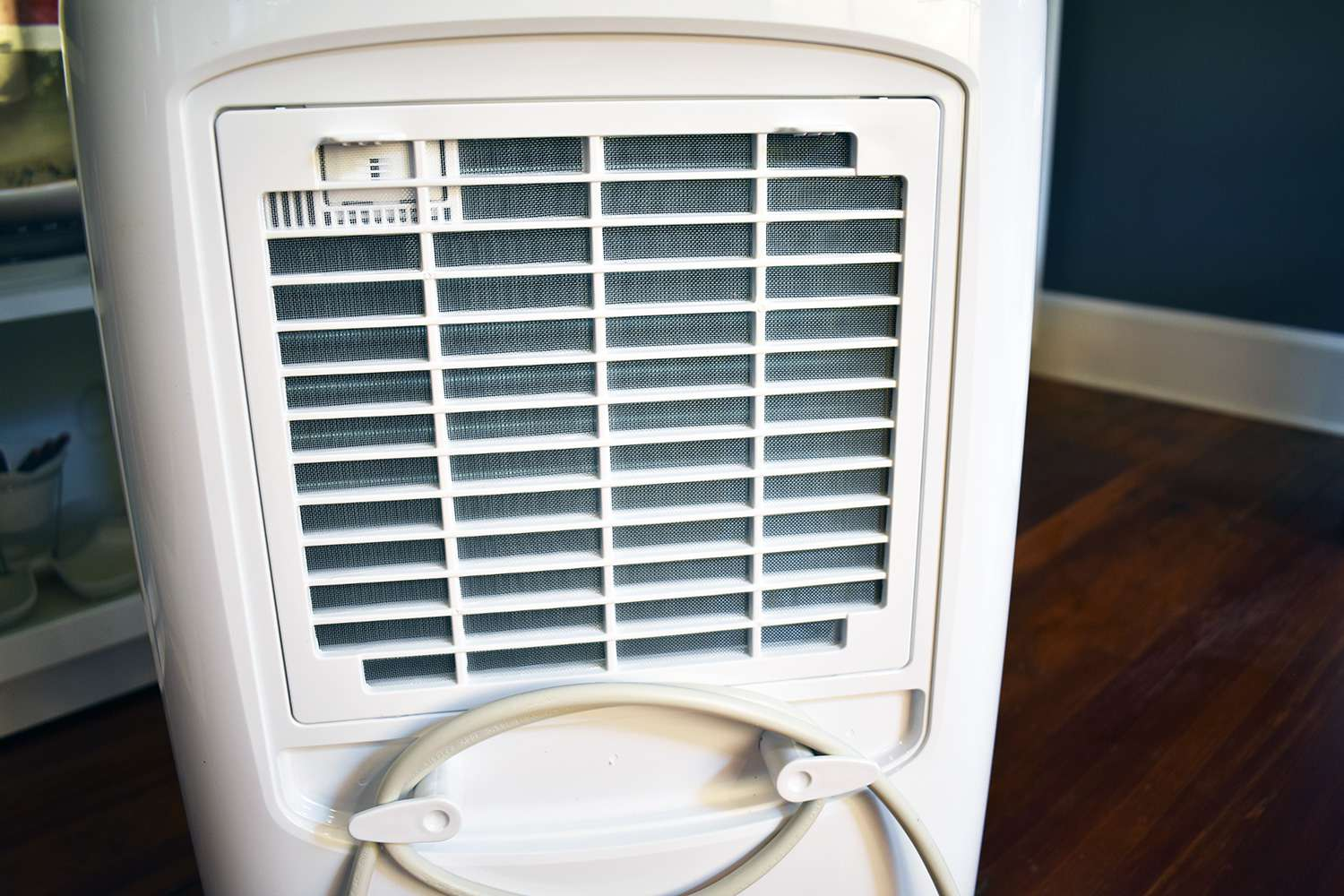 The 8 Best Dehumidifiers of 2019