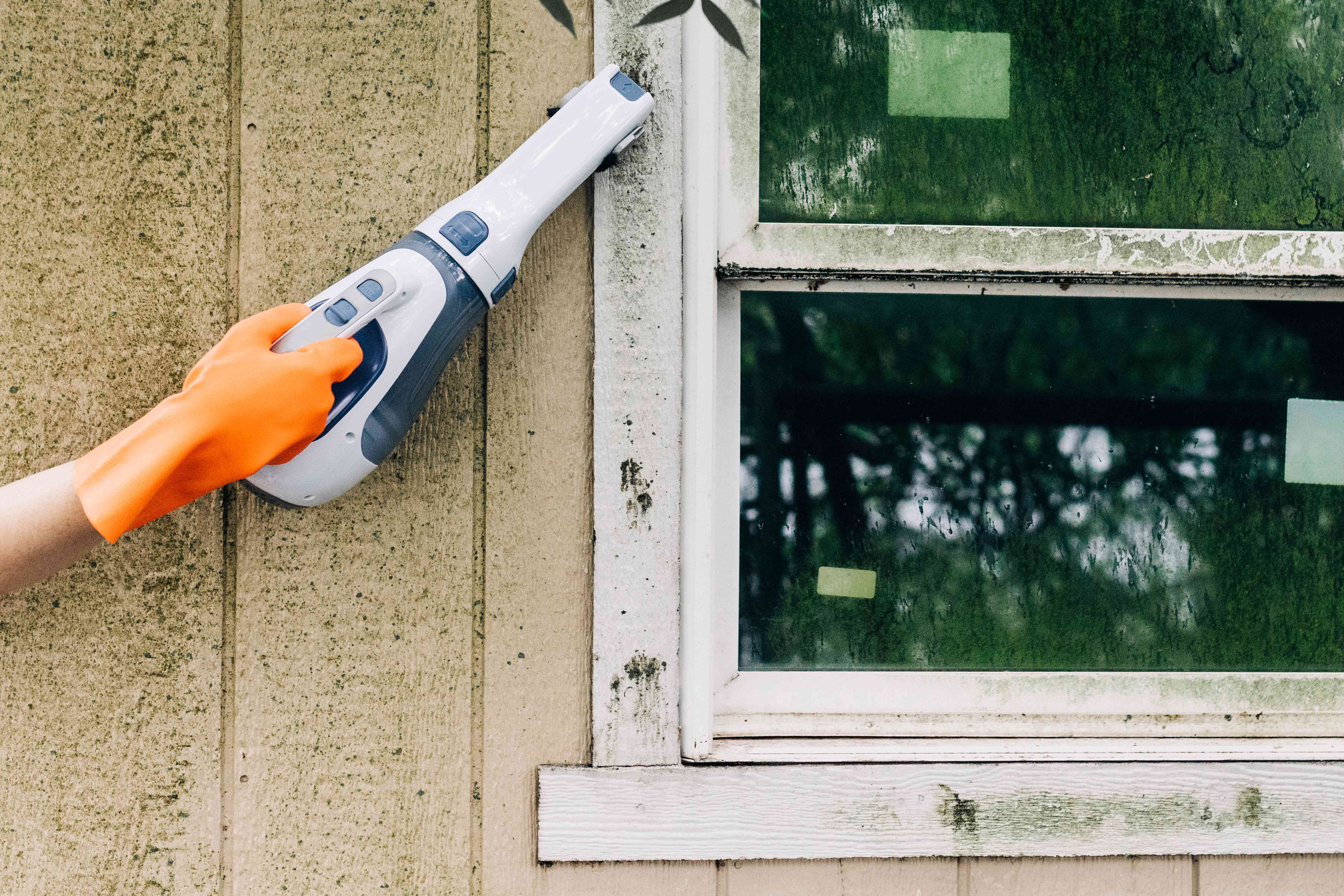 Outdoor mold vacuumed by handheld HEPA filter vacuum and held with orange gloves