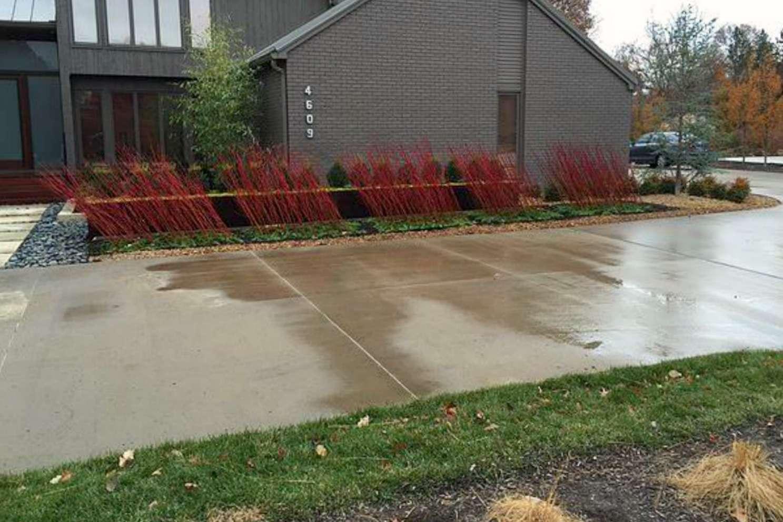 cornejo de casa moderna en el patio delantero