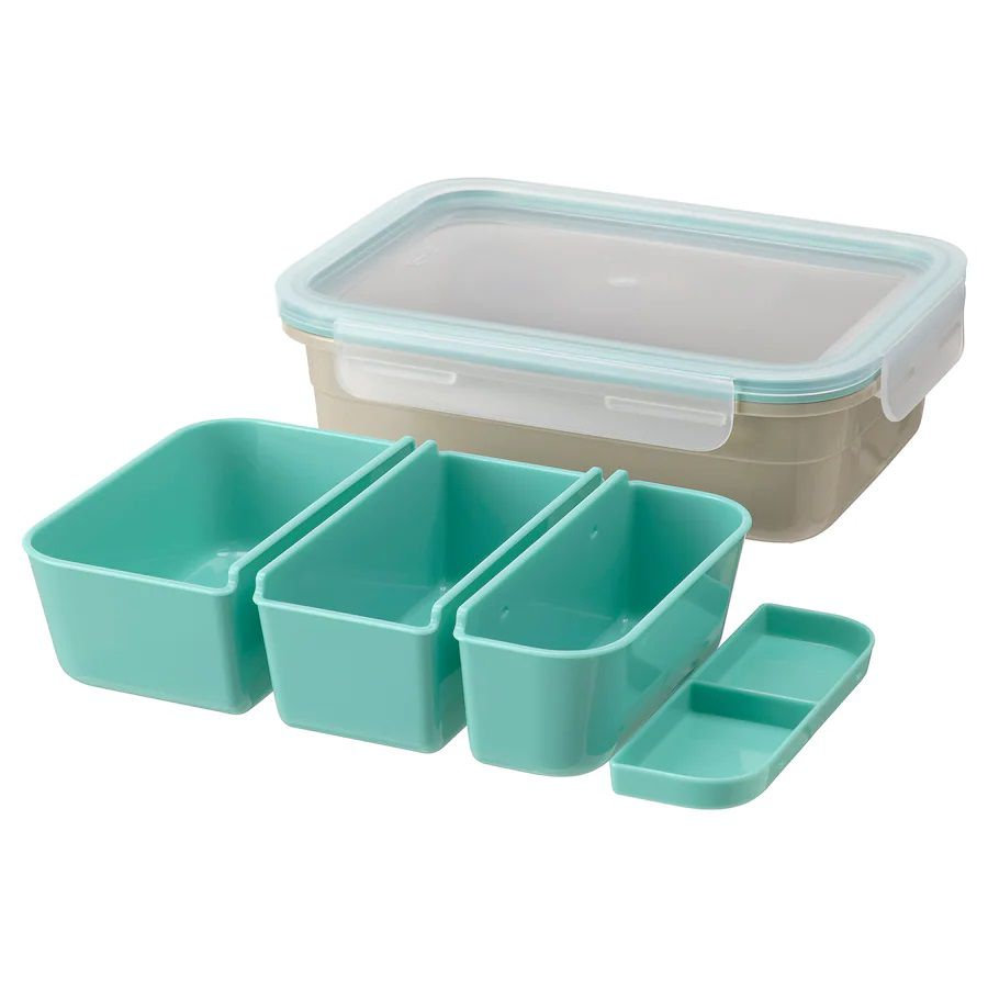 Lunch box with bins