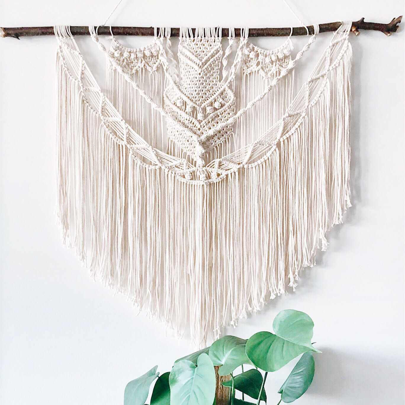 Macrame wall hanging with a plant below.