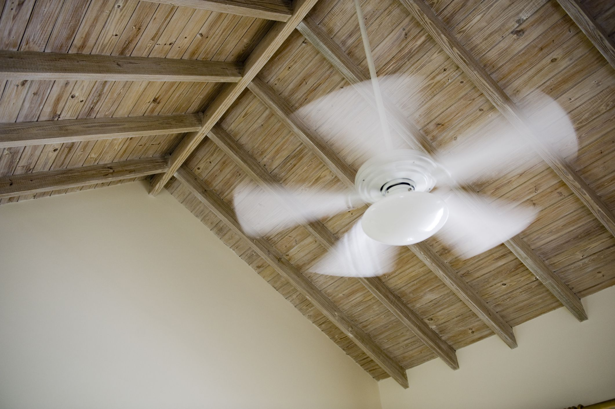 Which Direction Should A Ceiling Fan Rotate