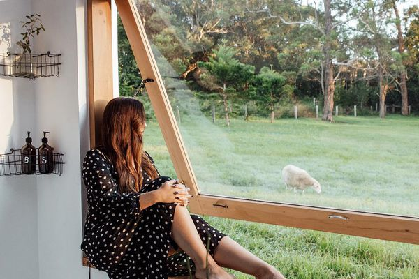 person sitting on a windowsill looking out at a sheep