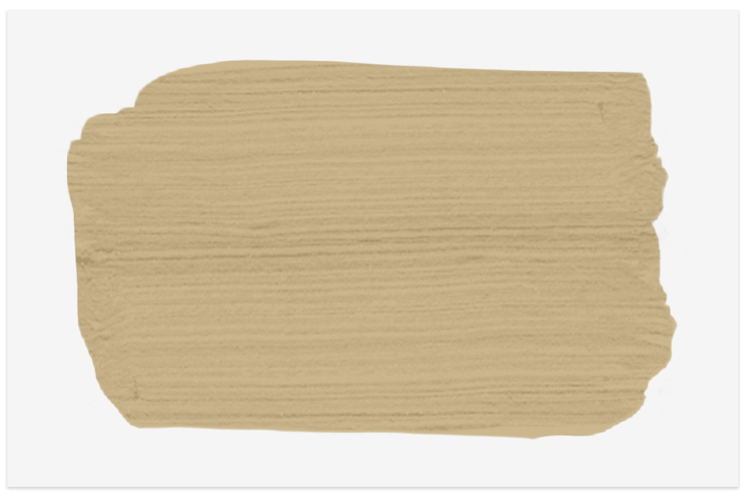 Shelburne Buff paint swatch from Benjamin Moore