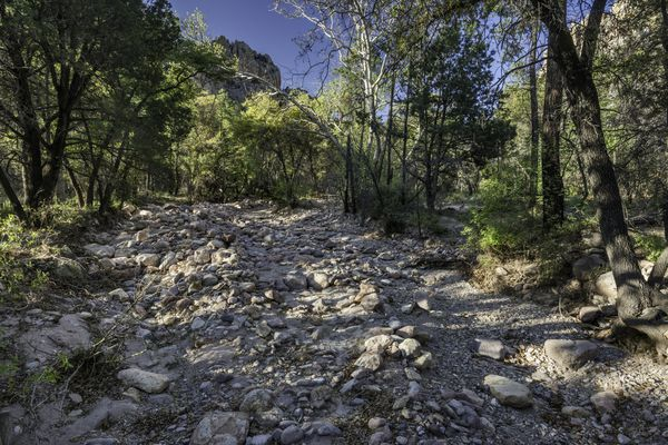 dry creek bed in nature.
