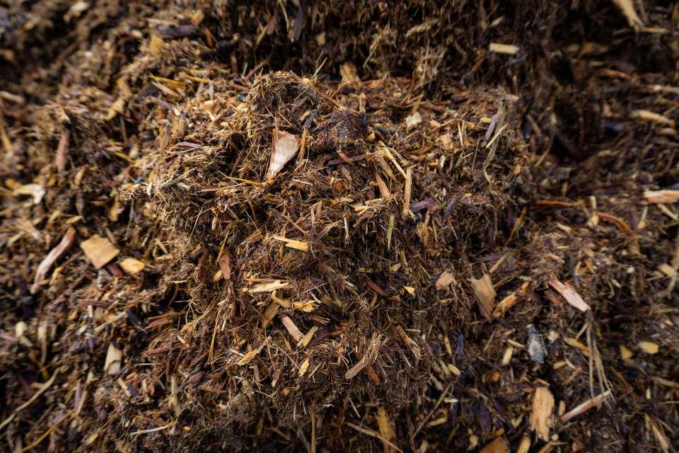 closeup shot of mulch