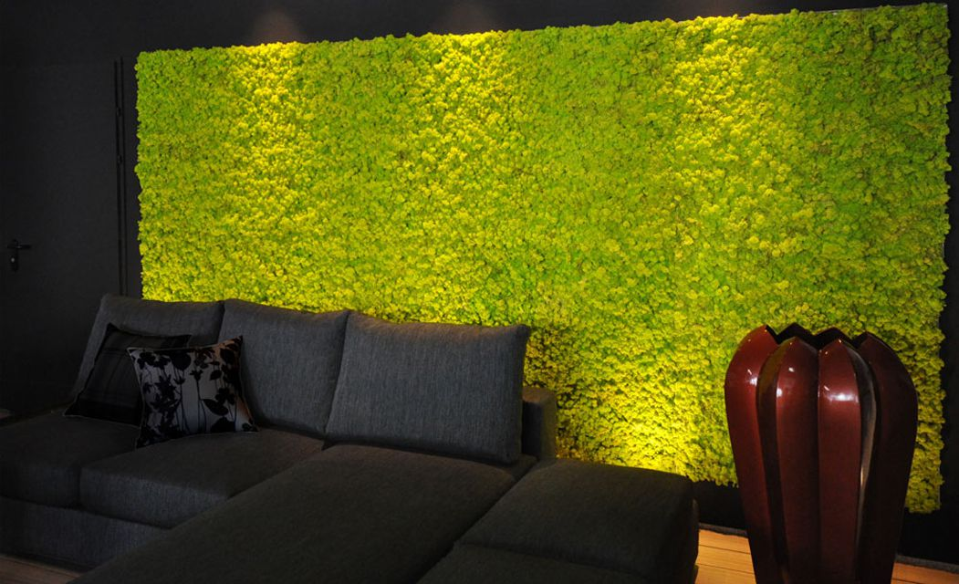 Moss Wall in a Black Living Room