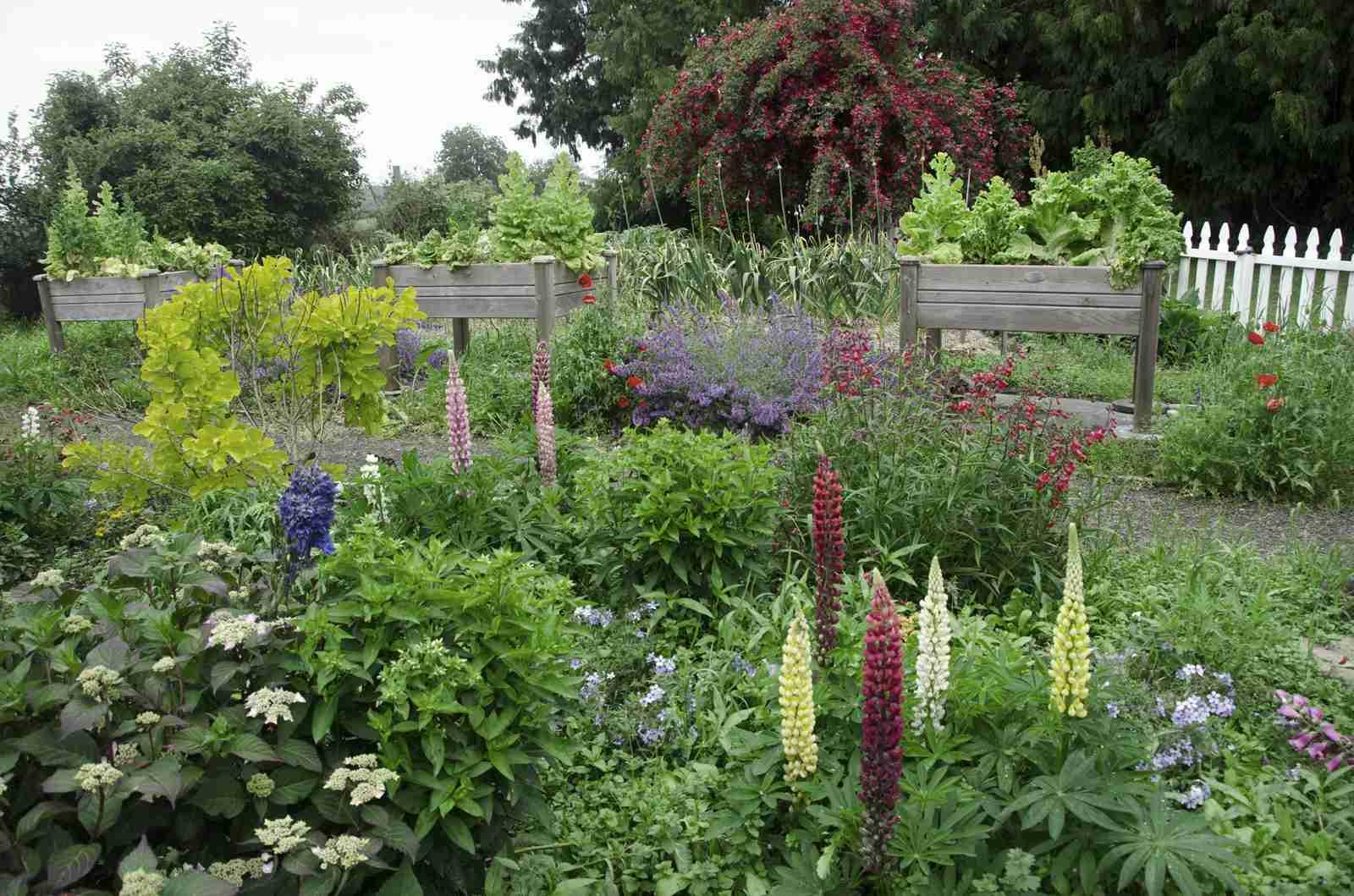 10 Creative Vegetable Garden Ideas
