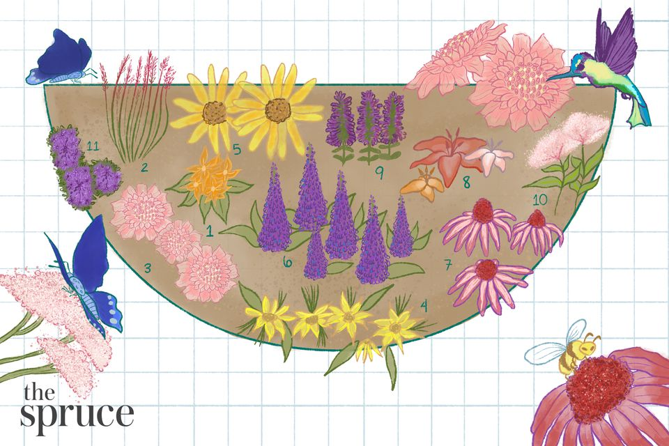 How to Design a Garden to Attract Hummingbirds and Butterflies