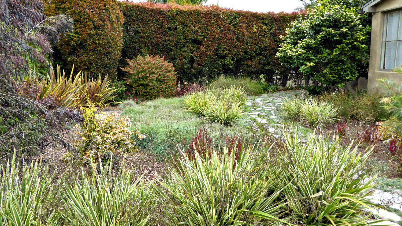 Garden Re Do Drought Tolerant California Coastal Yard,Minimalist House Interior Design Philippines