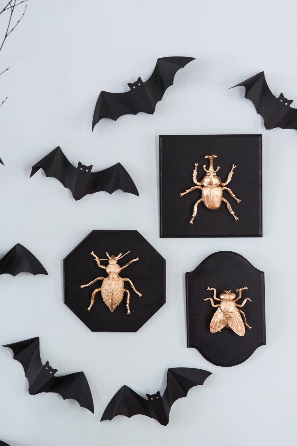 Black and gold bug plaques
