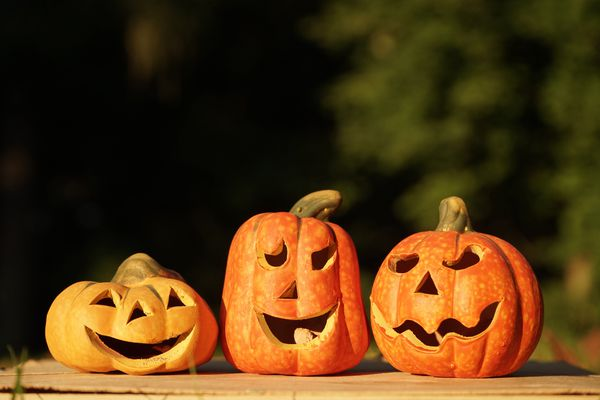 Three carved pumpkins in a row