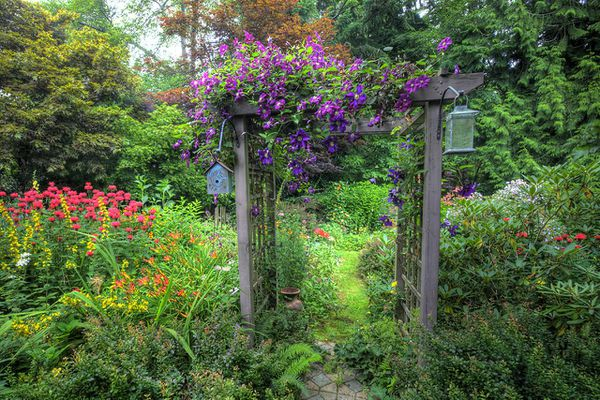 Garden and path arbor, colors of summer
