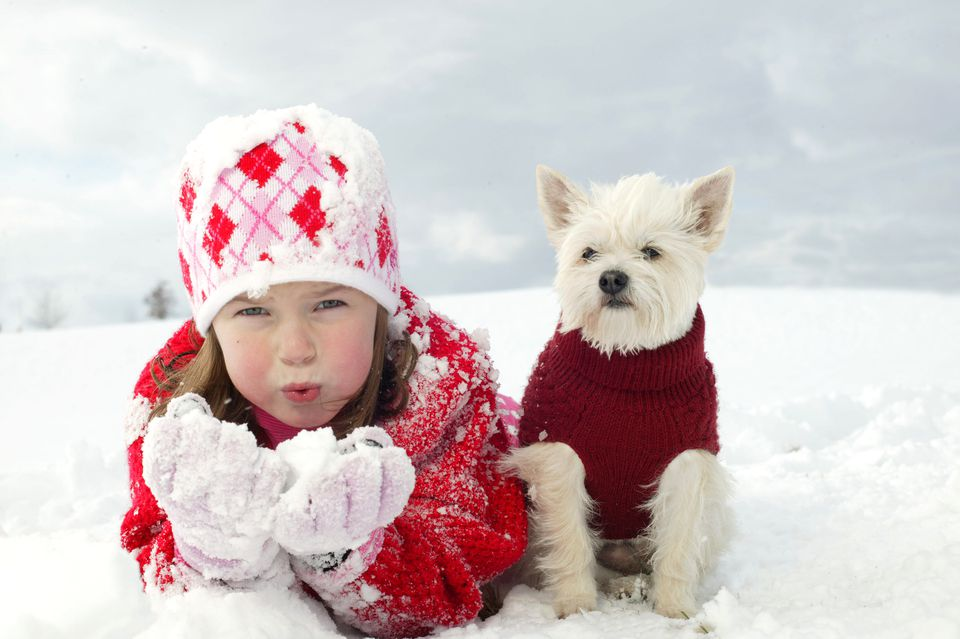 Dog wearing a sweater and a child in the snow