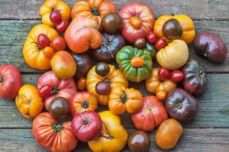 Heilroom Tomatoes