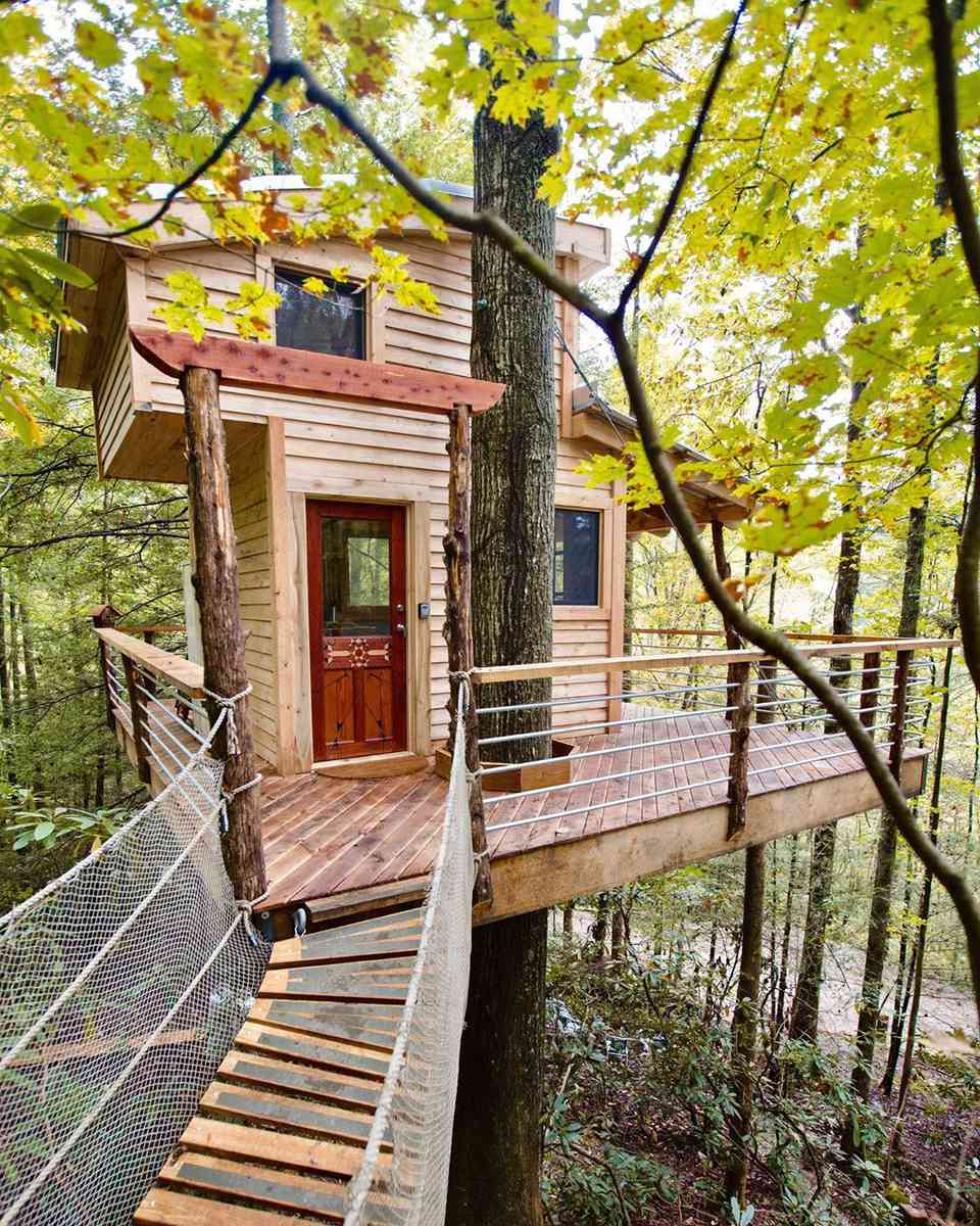 Tree house with a walkway