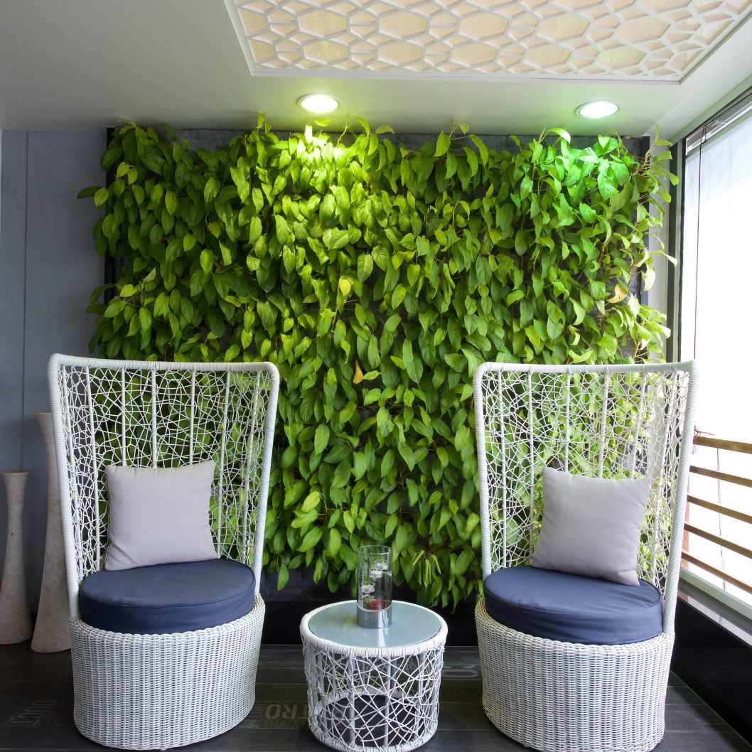Green wall growing on an enclosed patio with wicker chairs and table.