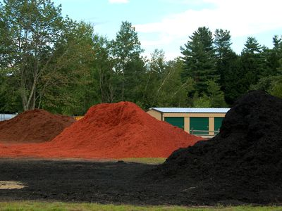 Is A Dyed Bark Mulch Harmful To Plants