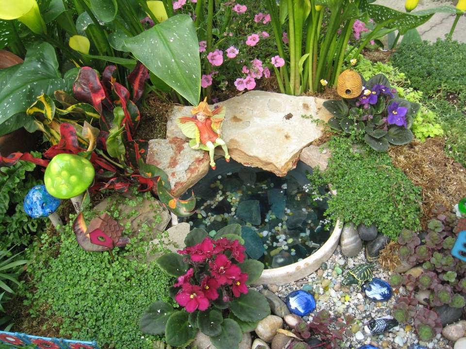 Flowering Fairy Garden