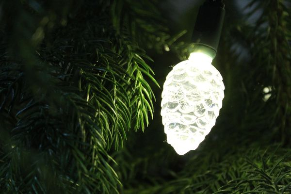 The Holiday Aisle 25 Light Pinecone LED String Light