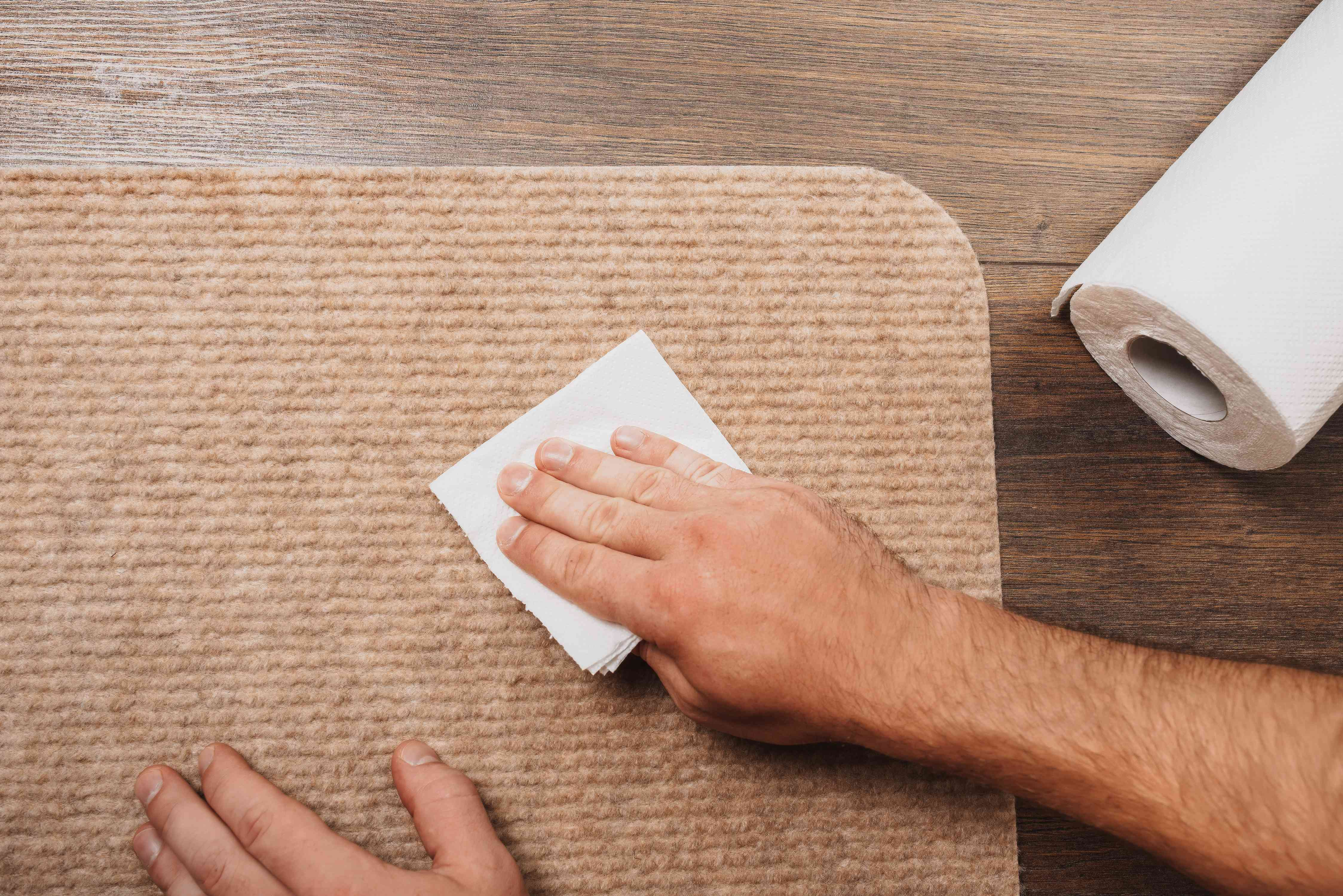 blotting a rug with a paper towel