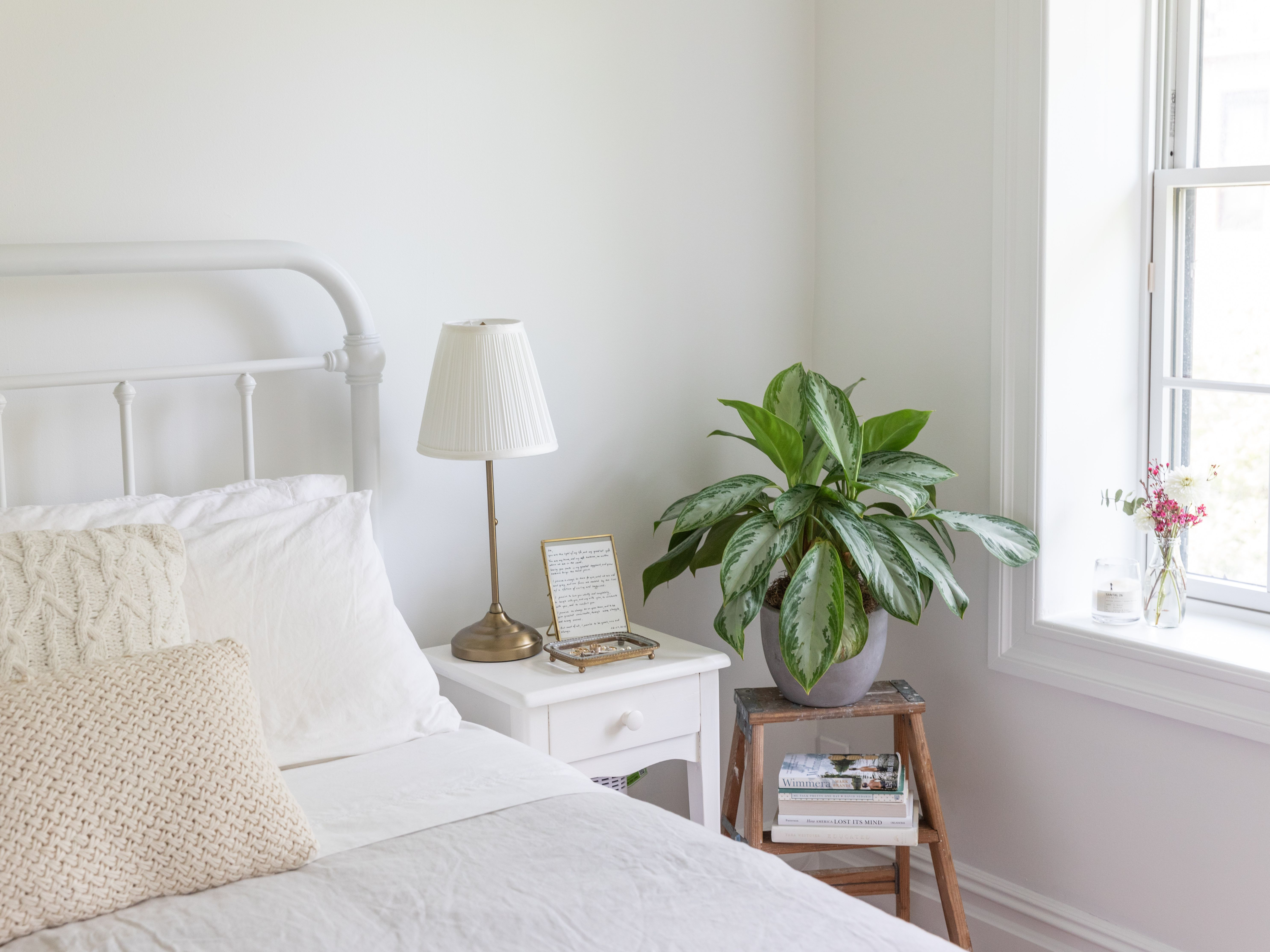 Feng Shui Use Of Plants In The Bedroom
