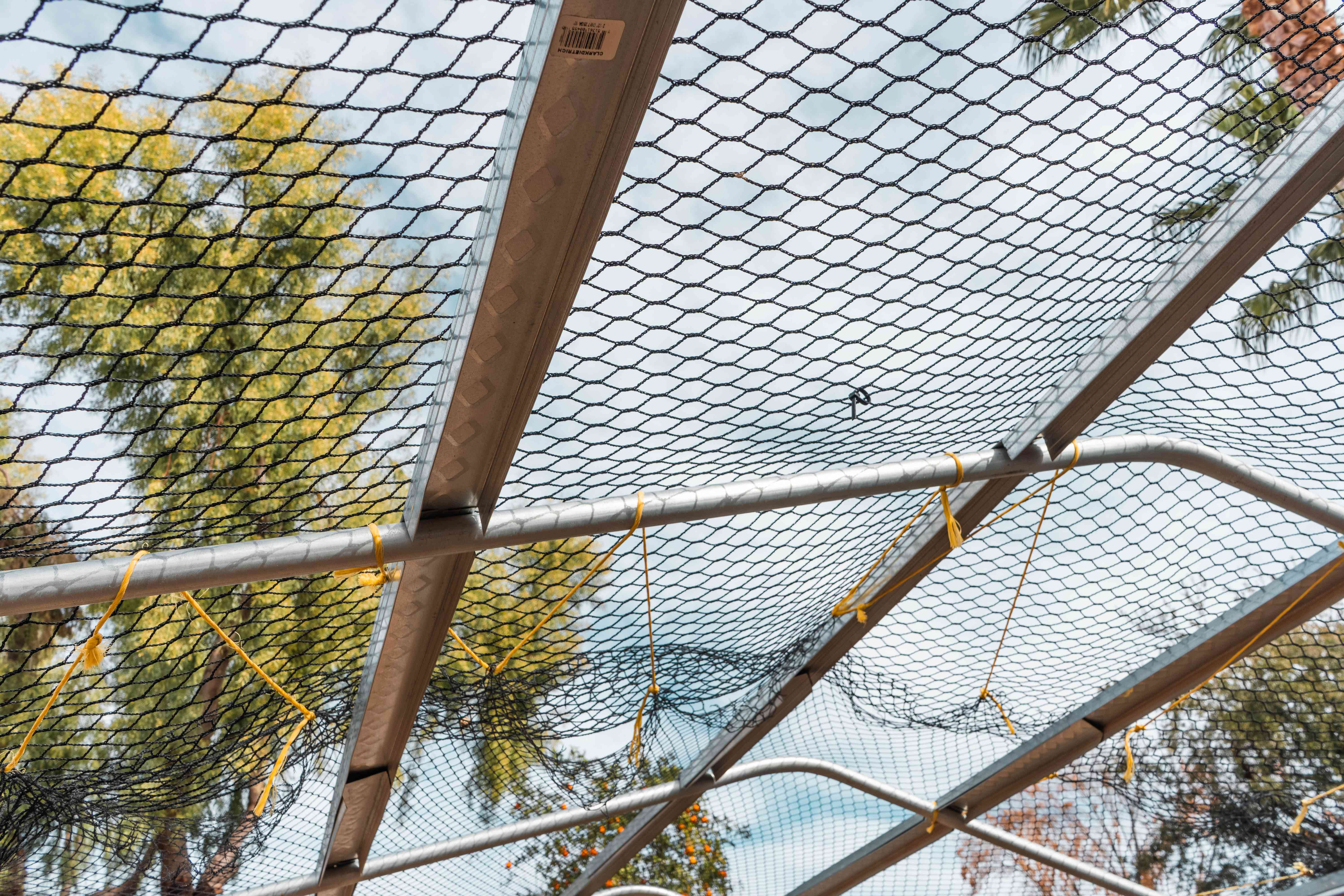 Aviary netting covering metal scaffolding over chicken coop