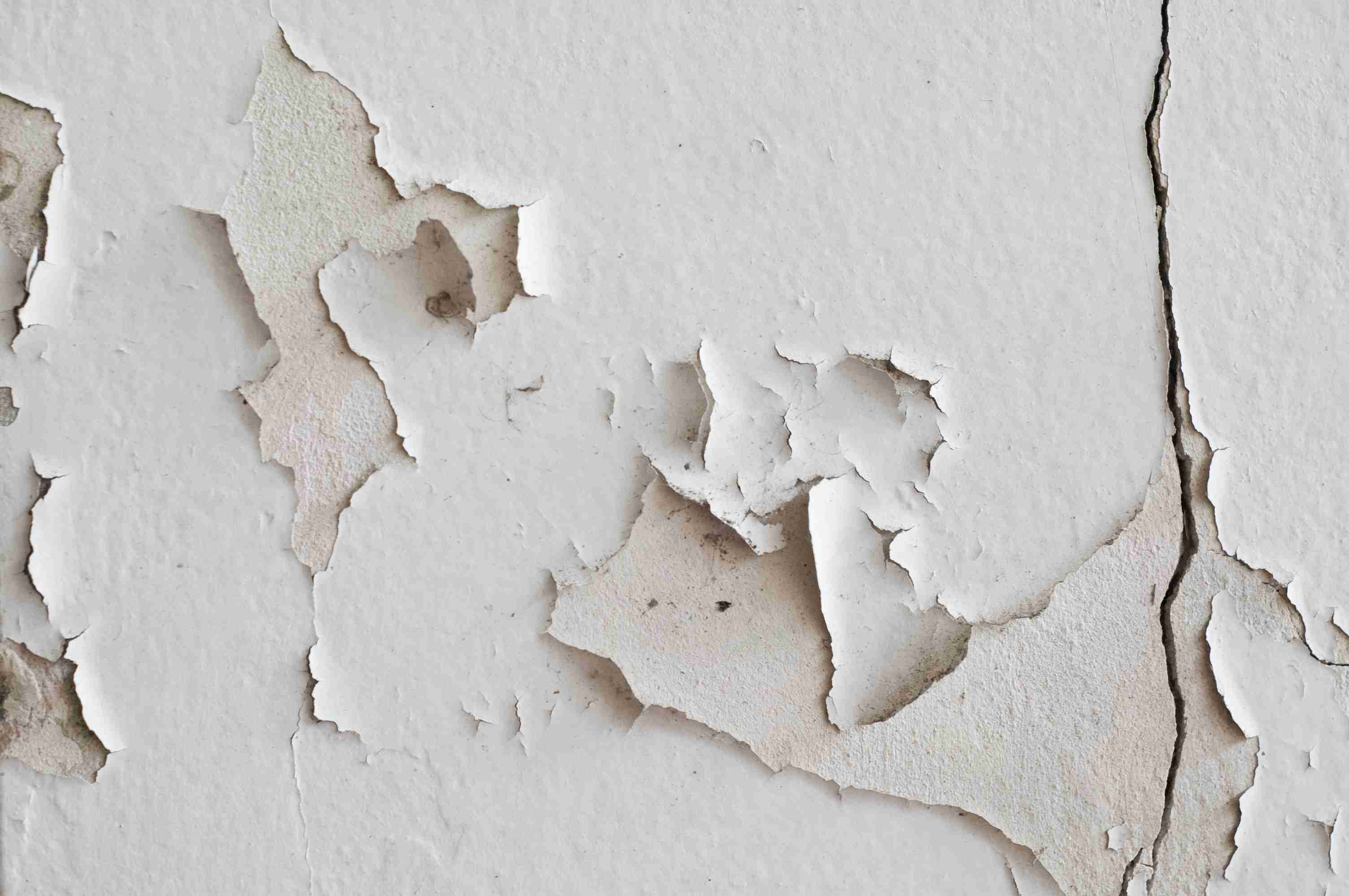 Paint peeling off wall