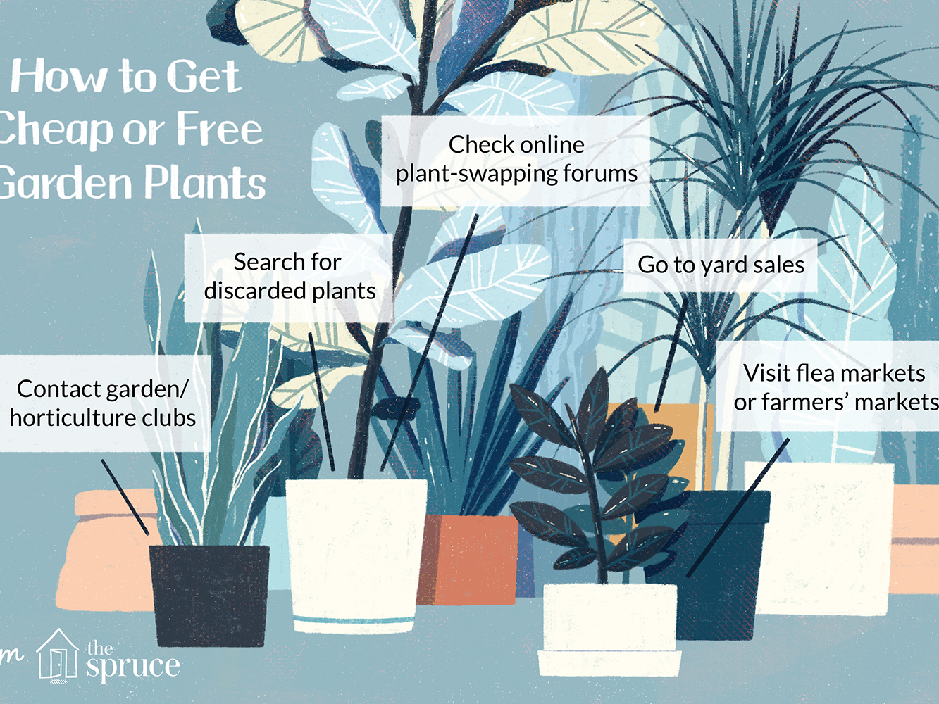 12 Ways To Find Free Or Garden Plants