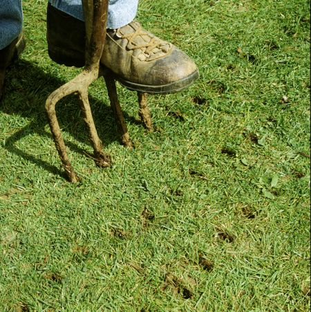 Lawn Aeration The Why When And How