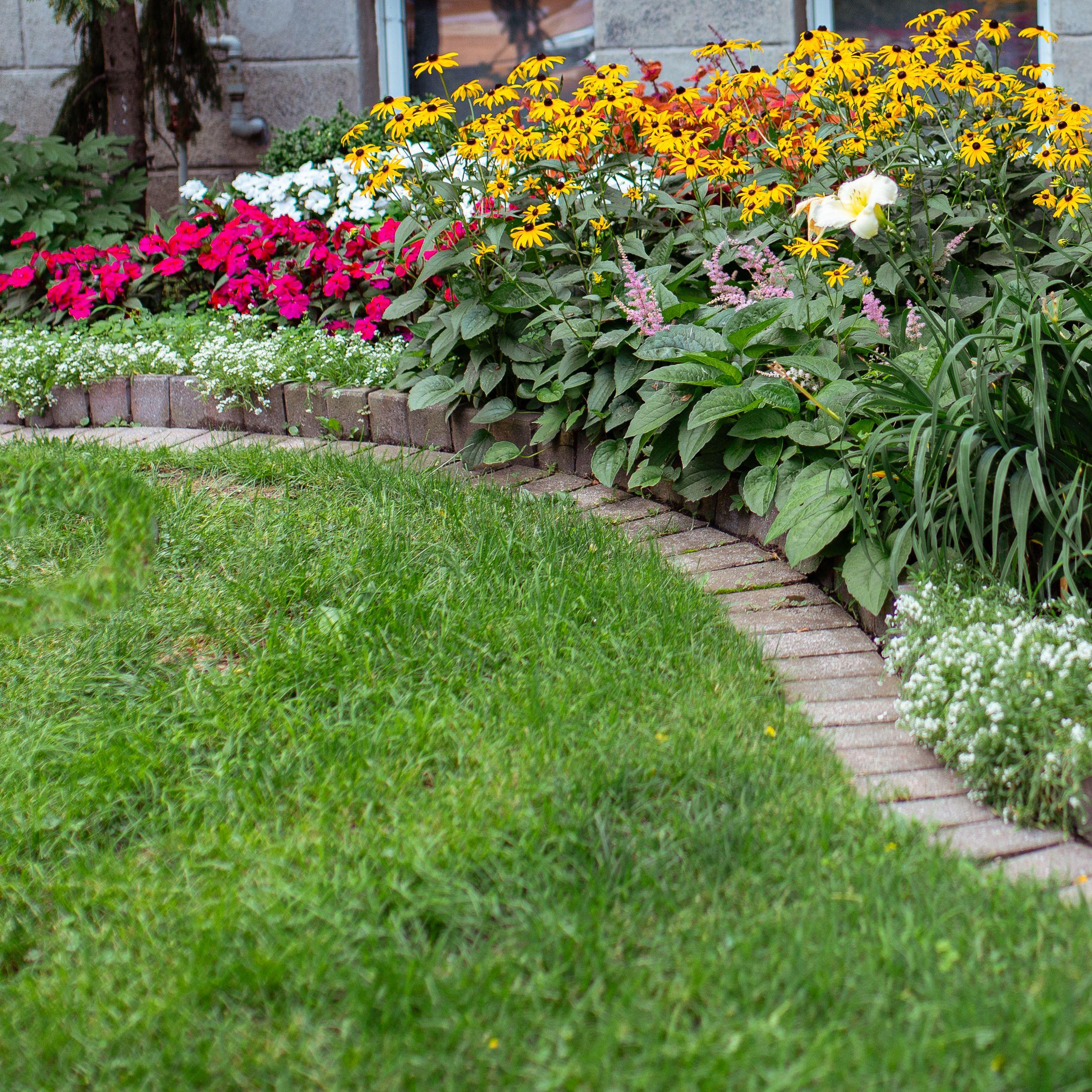 13 Flower Border Ideas The Spruce