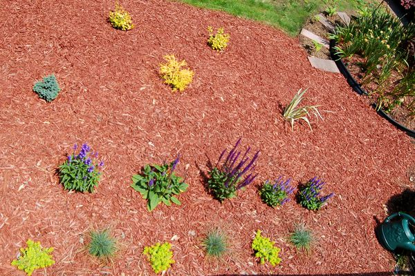 This flower bed (image) consists of shrubs and perennials. Mulch is your floor and weed-fighter.
