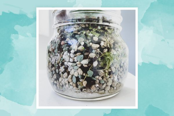 Pon substrate in a jar