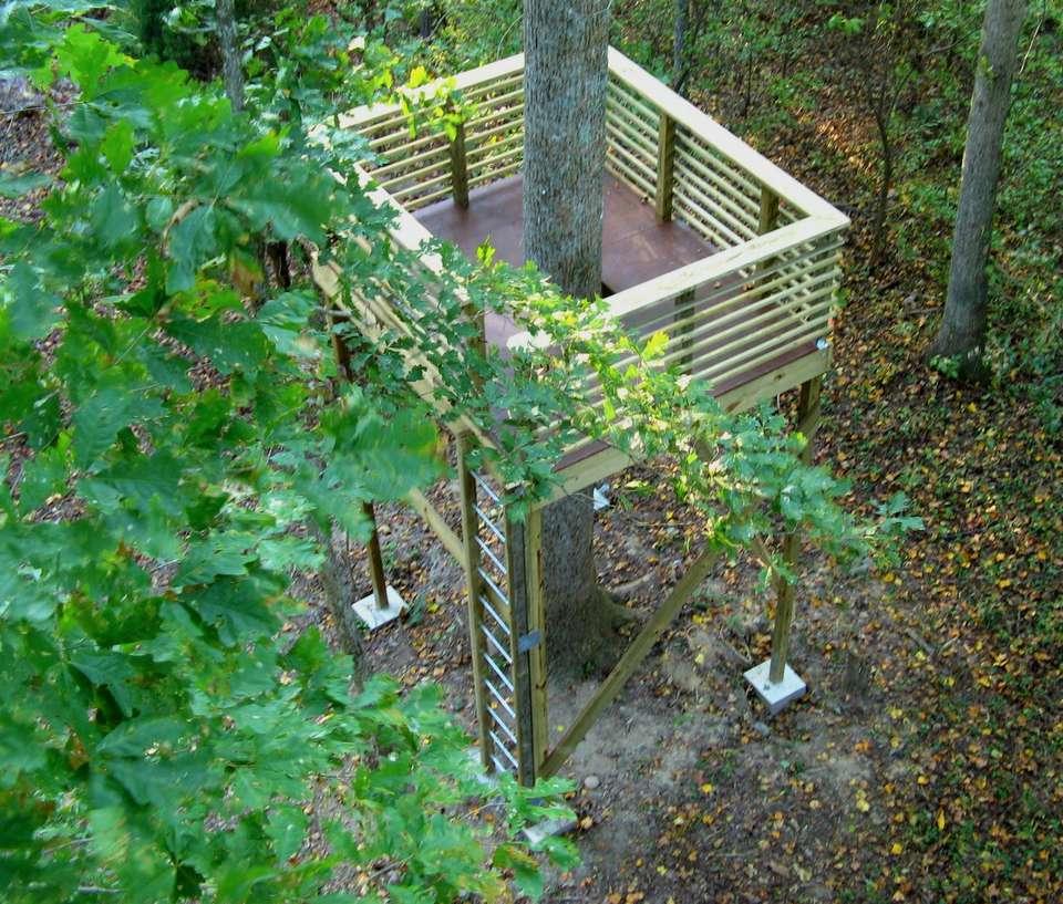 Platform Style Treehouse