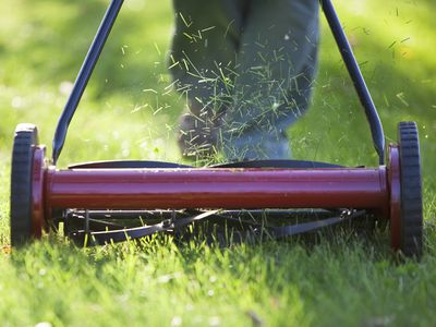 How to Cut Grass Properly: Mowing and Lawn Care Tips