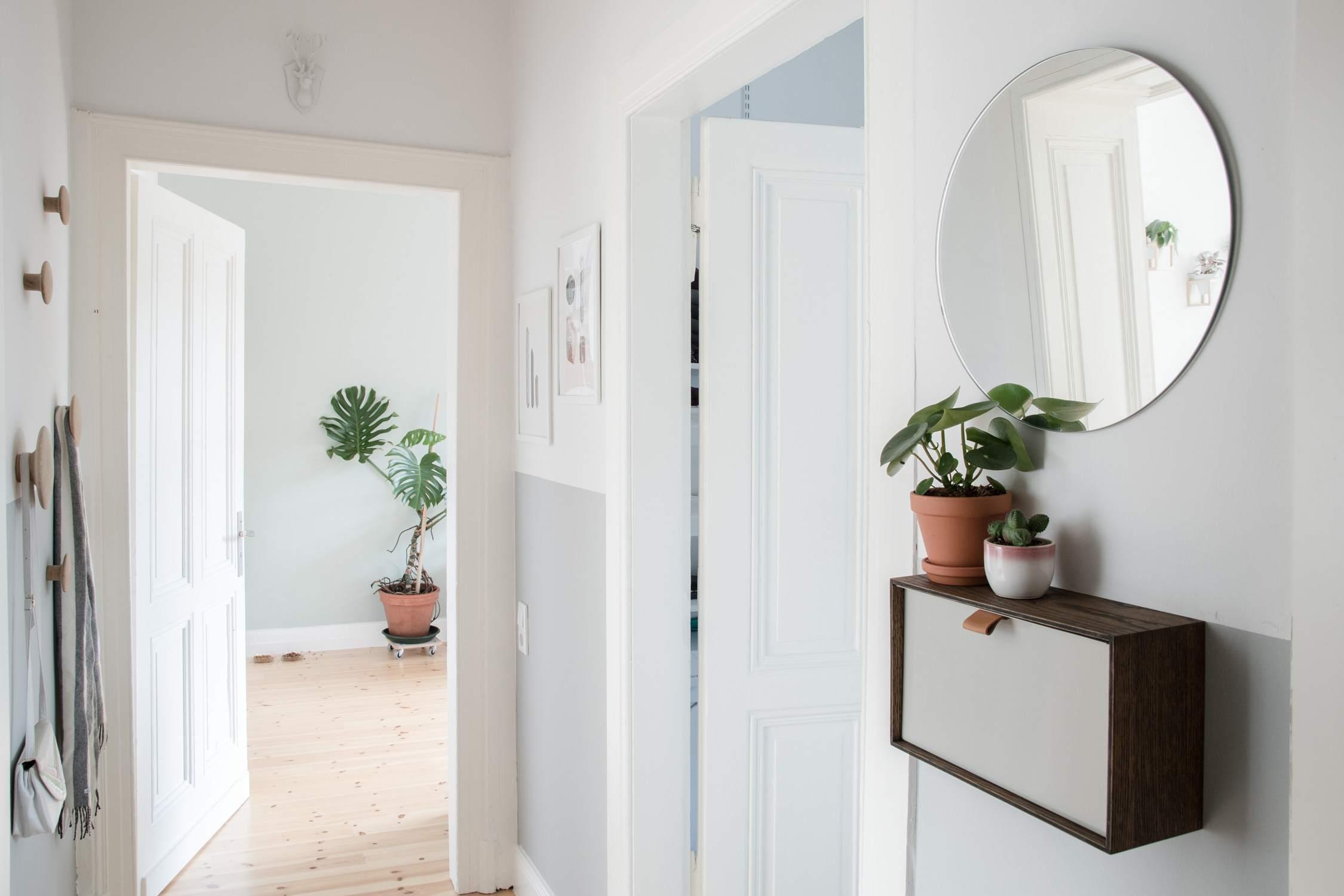 Plants in entryway