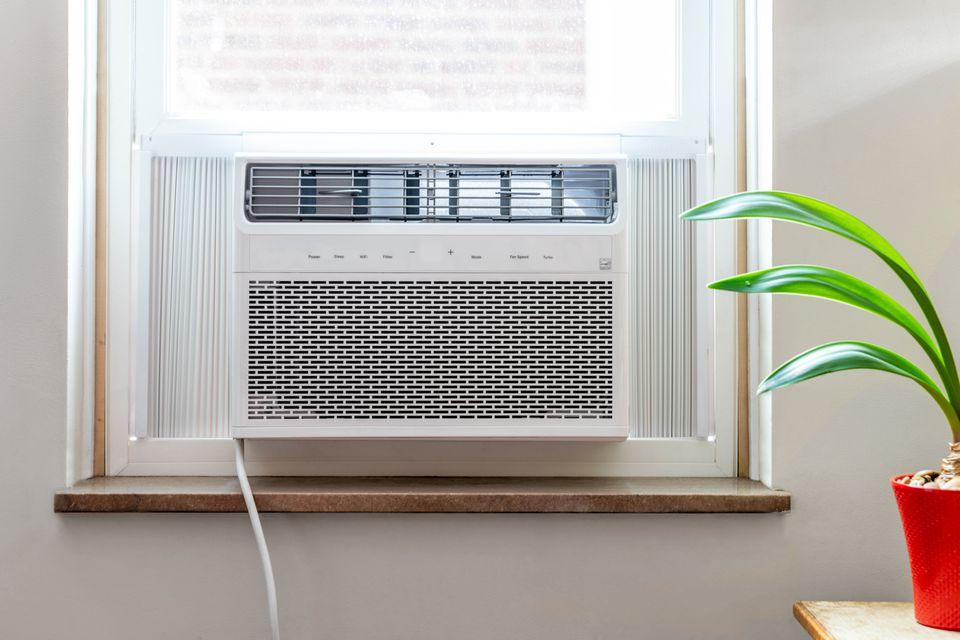 Window air conditioner next to houseplant