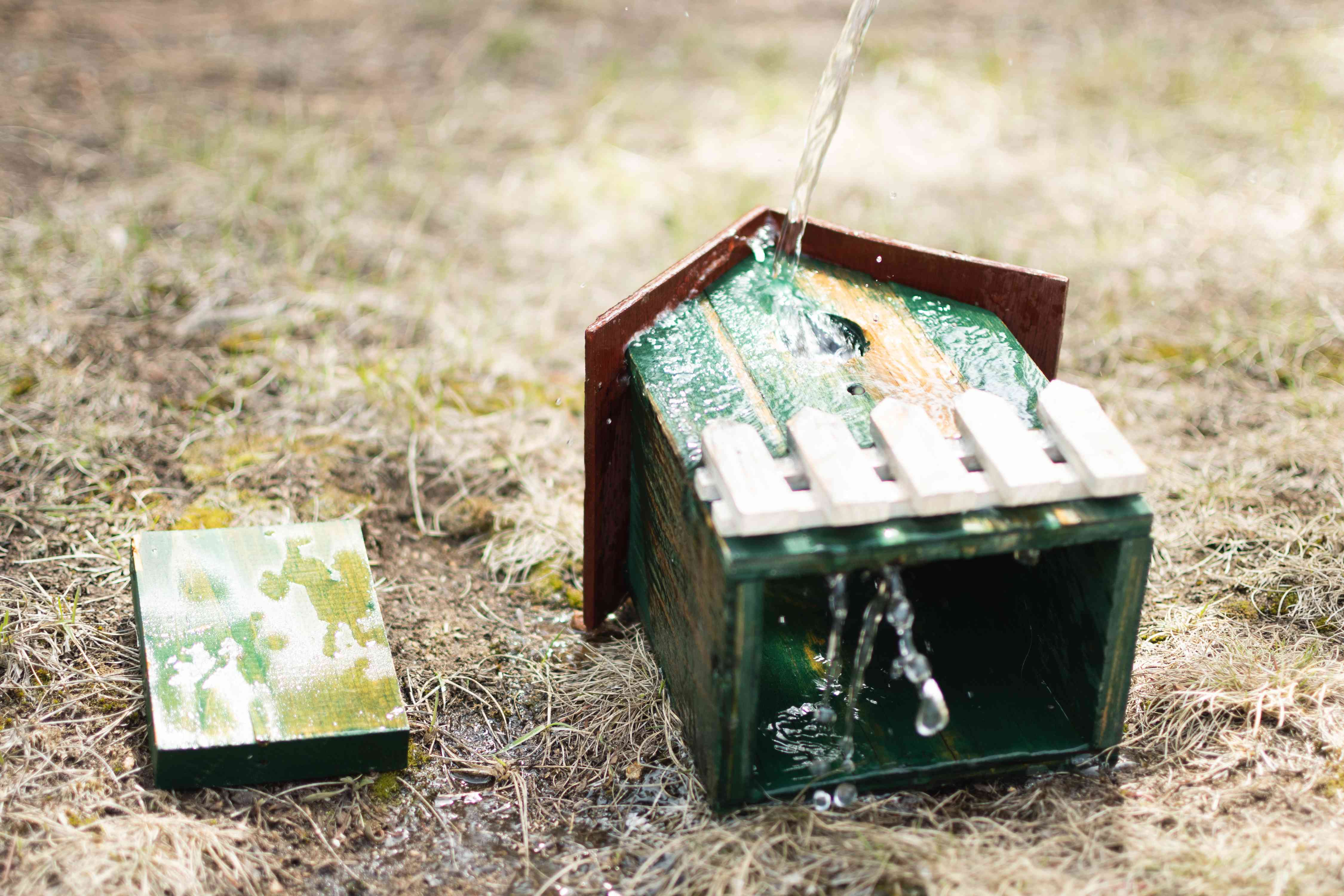 Wooden green birdhouse rinsed with clean water to remove bleach solution